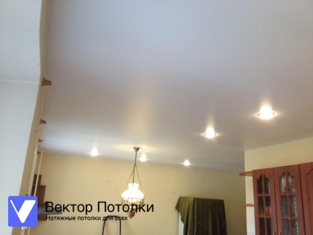 матовый натяжной потолок со светильниками на кухне