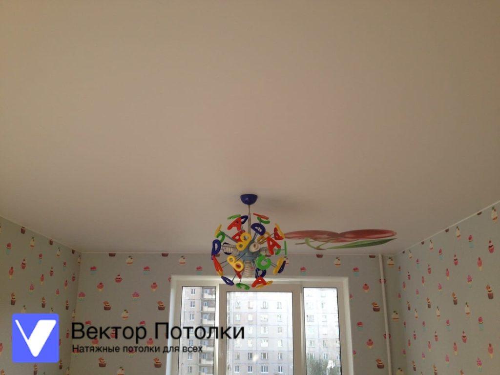 фотопечать на натяжном потолке фрукты
