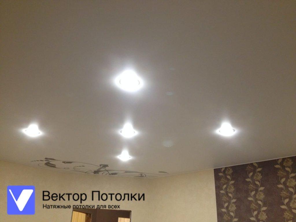 натяжной потолок белый матовый с фотопечатью и светильниками
