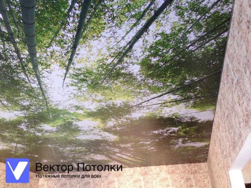 натяжной потолок с фотопечатью природа в спальне