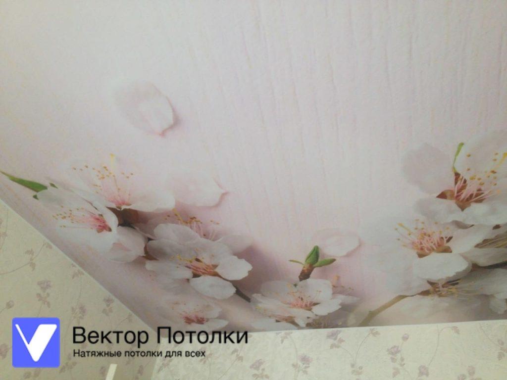 сатиновый натяжной потолок с фотопечатью цветы
