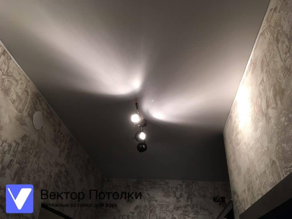натяжной потолок в коридоре с люстрой