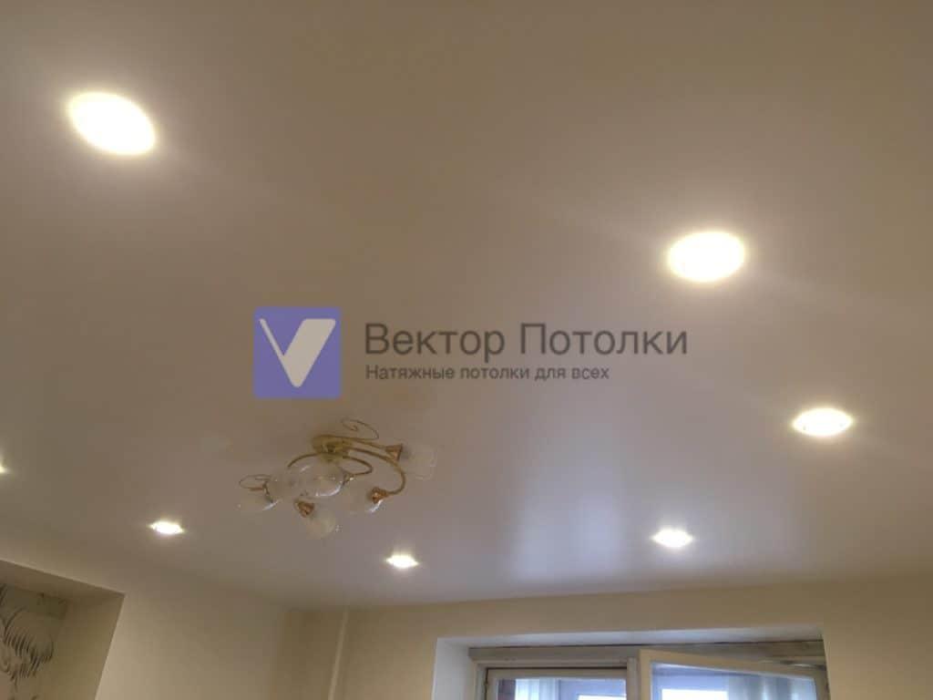 матовый натяжной потолок со светильниками в кухню